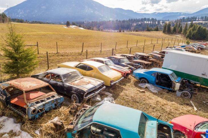 ВКанаде продается два гектара старых авто
