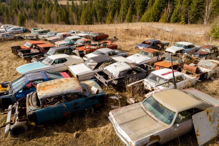 Автомобильное кладбище выставили на реализацию за млн долларов