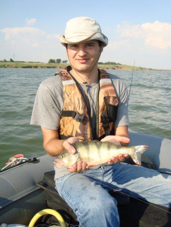 донфишер рыбалка в ростовской области